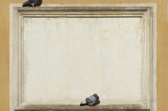 antique-frame-with-pigeons-1234090